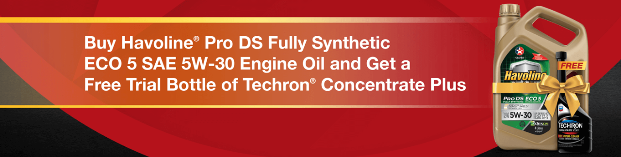 Buy Havoline® Pro DS Fully Synthetic ECO 5 SAE 5W-30 Engine Oil and Get a Free Trial Bottle of Techron® Concentrate Plus